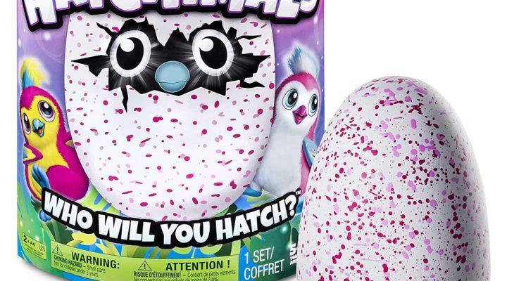 Hatchimals In Box-Hatchimals Review