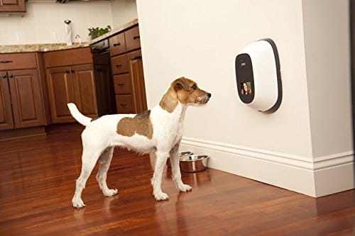 PetChatz Pet Camera - Best Pet Camera