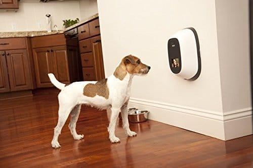 PetChatz Pet Camera - Best Pet Camera