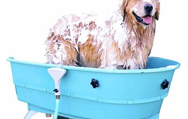 best dog bath tub