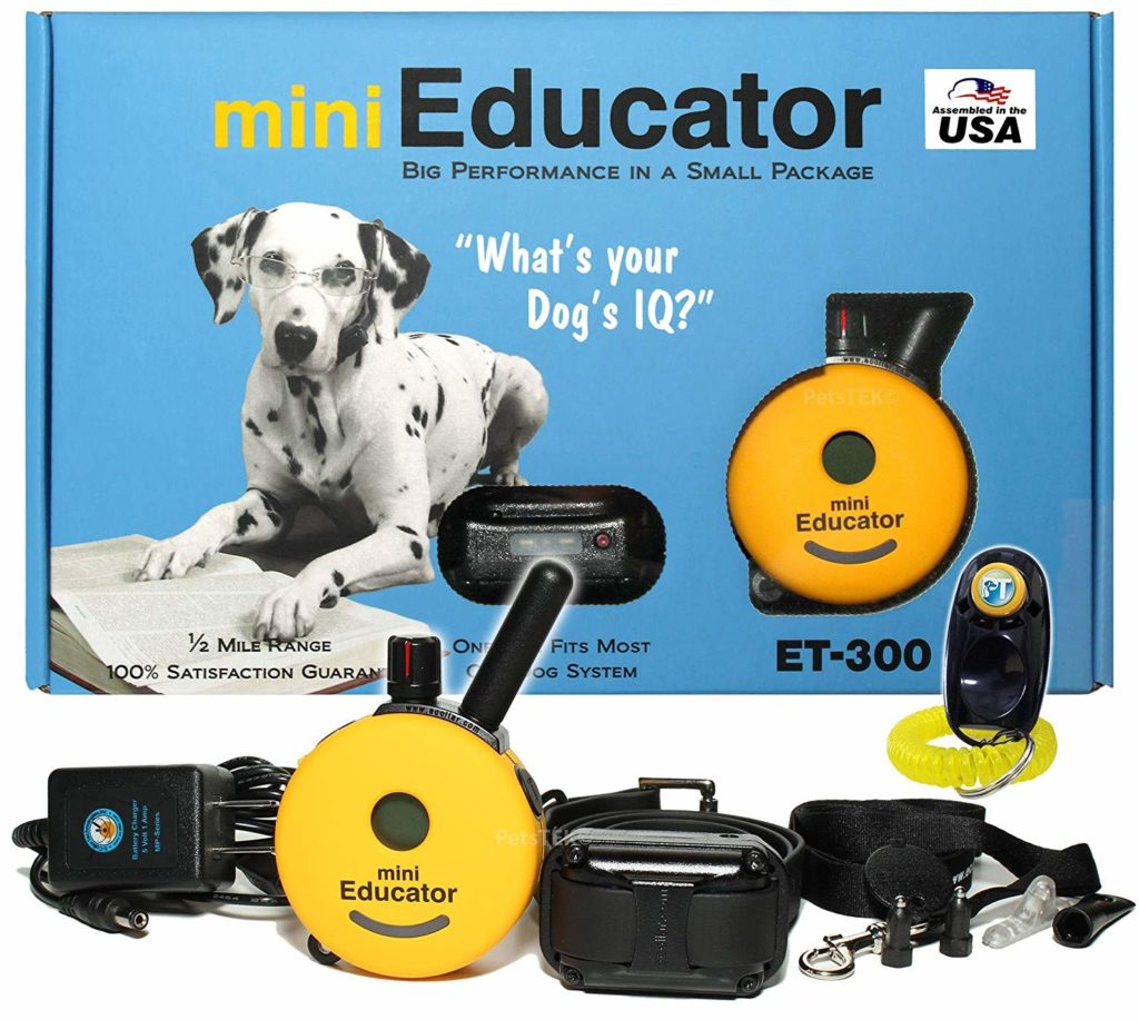 e collar training system for dogs
